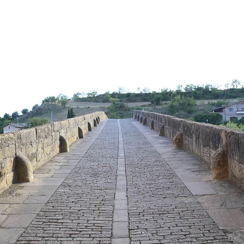 Puente la Reina - Turismo en Navarra