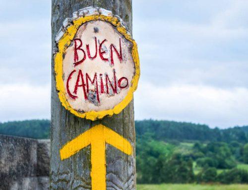 El Camino de Santiago: Camino Francés