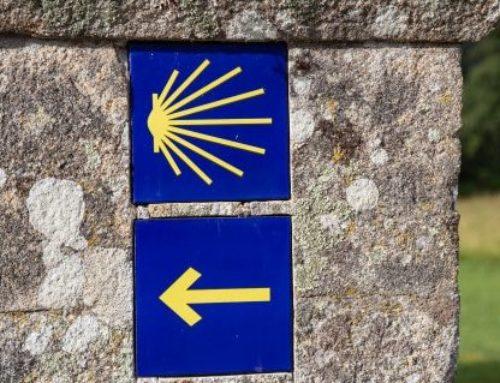 Camino de Santiago: un poco de historia